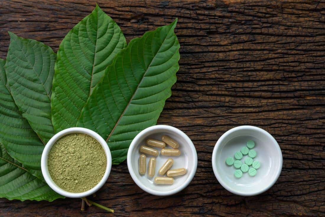 Kratom leaves and extracts